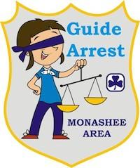 Guide Arrest